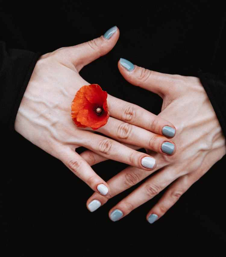 person holding red petaled flower between his finger
